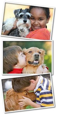 Old Dominion Vet >> Old Dominion Animal Health Center | Veterinarian McLean VA | Dog Vet McLean | Pet Veterinarian ...