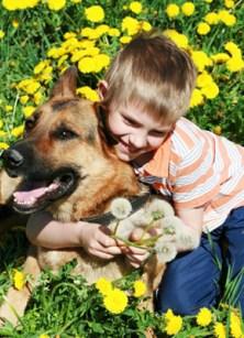 Spring Pet Tips